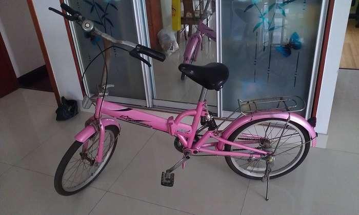 转让凤凰牌折叠自行车