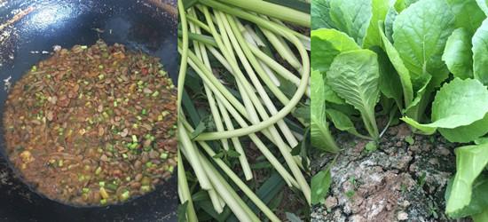 婆婆在徐州大沛县种的菜:满满的都是绿色生活