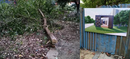 陈渡新苑社区:请停止毁坏生态树林(公共绿地)停建未批工程