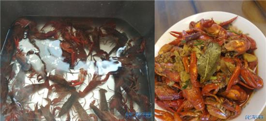 菜场收尾15一斤的小龙虾,个个都是活的!眉毛要鲜掉了!