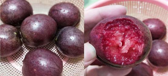 老家长的桃子,已经吃了20年了,啥品种不知道,来看看呢