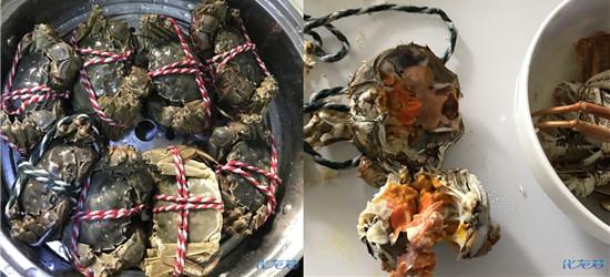 太馋的下场:螃蟹吃多了,一口气搞了八只,现在胃好疼还想吐