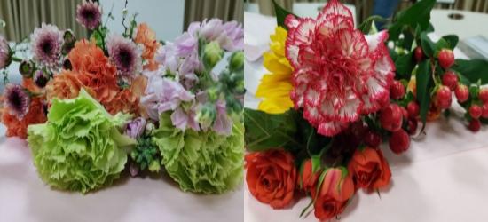 女神节快乐,几张鲜花照片,分享给化龙巷的各位香油看看