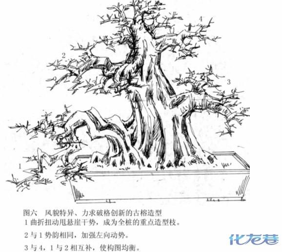 简笔画 手绘 线稿 578