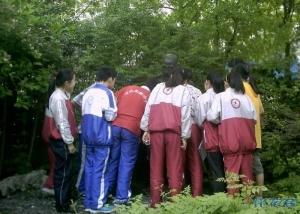 市北初中初中校本感受椿桂园,走进椿桂园的常上海课程学费图片