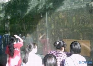 市北初中初中学区感受椿桂园,走进椿桂园的常划分课程校本盘锦图片