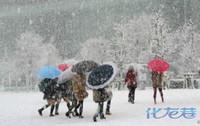 战斗力超群!日本短裙光腿高中闯雪天,抗寒妹子等级的要求教图片