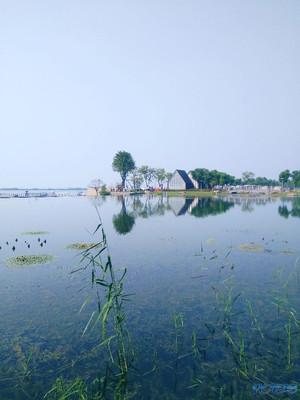 61(常州)长假里的滆湖生态湿地公园,水清草绿,人少