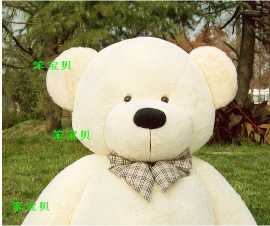 韩国可爱熊熊图片