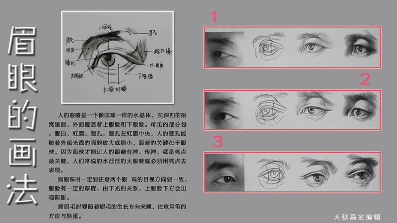 素描鼻子的详细画法 素描鼻子的画法图解 素描鼻子的画法