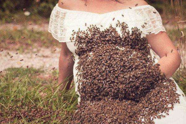 孕妈和2万只蜂合照