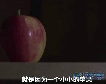 随手带苹果被罚$500