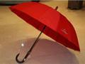 选把伞测试脾气