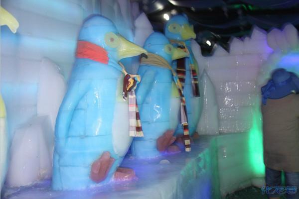 珠海横琴野生动物寄养馆(企鹅池与白鲸池)