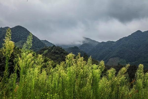 8月9号宁国之旅游记,还有一些风景照片.